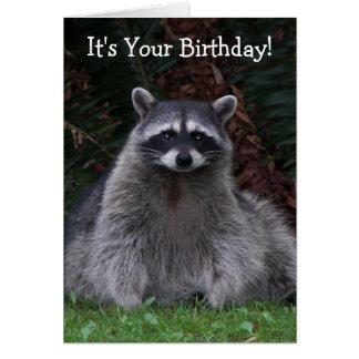 Cumpleaños de la foto del mapache del bosque tarjeta de felicitación
