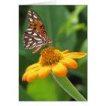 Cumpleaños de la mariposa tarjeta