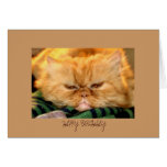 Cumpleaños de la tarjeta de felicitación feliz ...