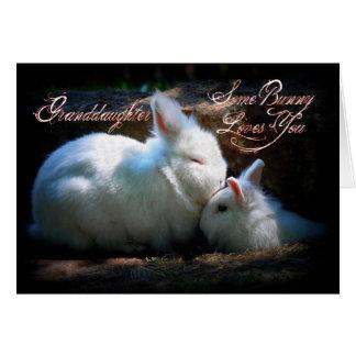 Cumpleaños de los conejitos de la nieta que se tarjeta de felicitación