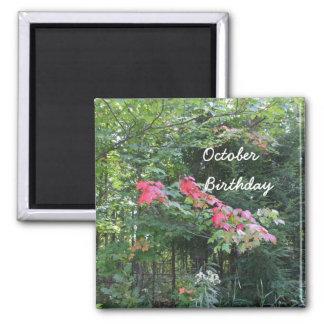 Cumpleaños de octubre para las hojas del todo-otoñ imán cuadrado