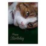 Cumpleaños de Personalizable del gato de Tabby del Tarjeta