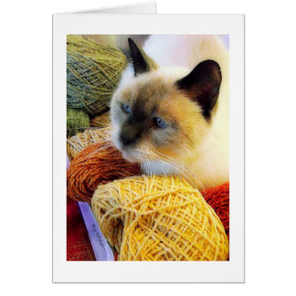 Cumpleaños de Purrfect, gato siamés en hilado Tarjeta De Felicitación