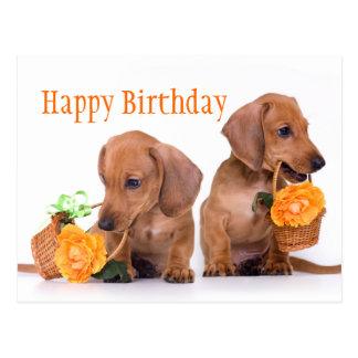 Cumpleaños del Dachshund Tarjeta Postal