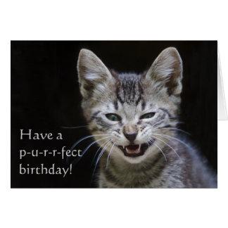 Cumpleaños del gatito del Tabby feliz Tarjeta De Felicitación