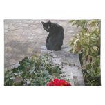 Cumpleaños del gato del jardín manteles individuales