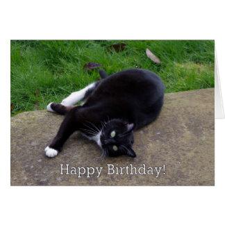 Cumpleaños del humor del gato tarjeta de felicitación