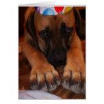 Cumpleaños del mastín - cumpleaños inglés del tarjeta de felicitación