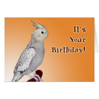 Cumpleaños del pío usted mismo tarjeta de felicitación