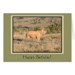 Cumpleaños del rinoceronte del bebé feliz tarjeton