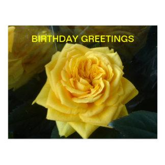 Cumpleaños del rosa amarillo