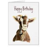 Cumpleaños divertido, de la cabra vieja que le ama felicitación