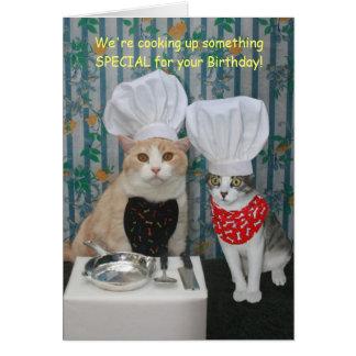 Cumpleaños divertido de los gatos del cocinero felicitación