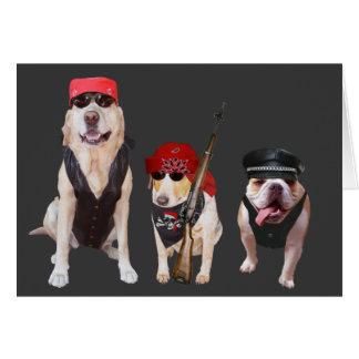 Cumpleaños divertido de los perros/del laboratorio tarjeta de felicitación