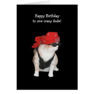 Cumpleaños divertido del gato del motorista de con felicitaciones