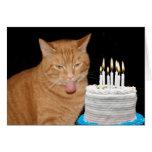 Cumpleaños divertido del gato felicitación