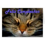 Cumpleaños español de Feliz Cumpleaños con el gato Felicitaciones