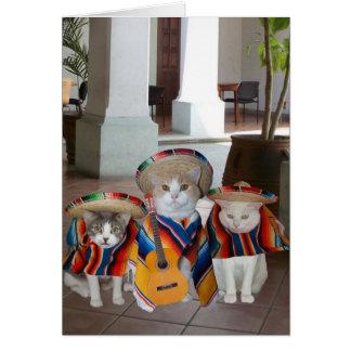 Cumpleaños español de los gatos divertidos para cu tarjetón
