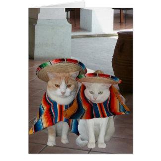 Cumpleaños español del gato divertido para el tarjeta de felicitación