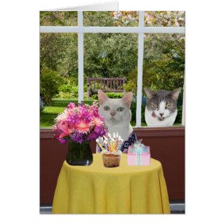 Cumpleaños femenino de Photobomb del gato bonito Tarjeta De Felicitación