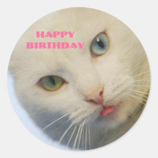 Cumpleaños, gato blanco con un ojo verde y el ojo pegatina redonda