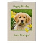 Cumpleaños, gran abuelo, perro del golden retrieve tarjetas