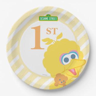 Cumpleaños grande del pájaro del bebé plato de papel de 9 pulgadas