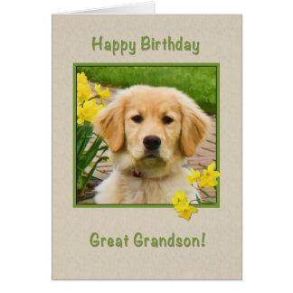 Cumpleaños, grande - nieto, perro del golden tarjeta de felicitación