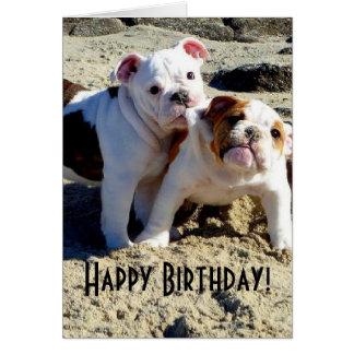Cumpleaños inglés del amor adolescente de los dogo tarjeta de felicitación