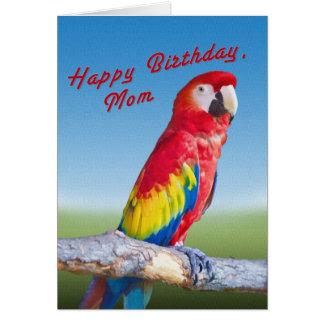 Cumpleaños, mamá, loro del Macaw Tarjeta De Felicitación