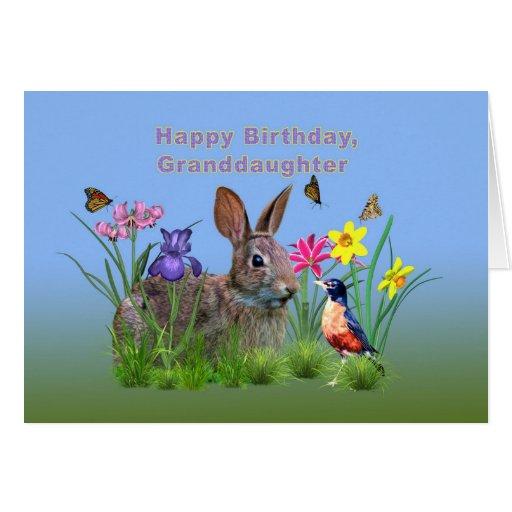 Cumpleaños, nieta, conejito, mariposas, petirrojo tarjeta de felicitación