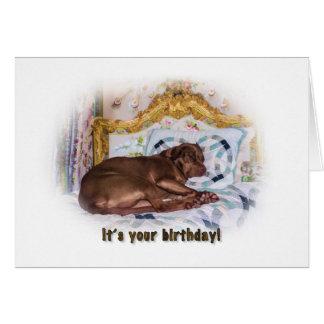Cumpleaños, perro del labrador retriever, tarjeta