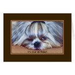 Cumpleaños, perro soñoliento de Shih Tzu Felicitacion