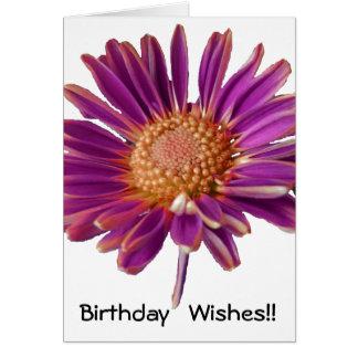 Cumpleaños púrpura de la margarita tarjeton