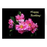 Cumpleaños rayado de los rosas felicitaciones