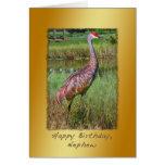 Cumpleaños, sobrino, pájaro de la grúa de Sandhill Tarjeta De Felicitación