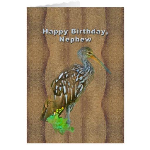 Cumpleaños, sobrino, pájaro del pantano de Limpkin Tarjeta De Felicitación