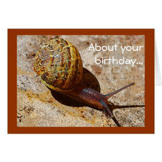 Cumpleaños tardío del snail mail tarjeta de felicitación