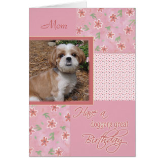 Cumpleaños - tarjeta de la foto del mascota