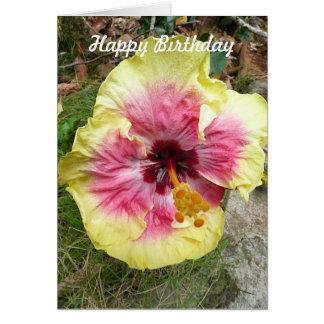 Cumpleaños tropical de la flor del hibisco rosado tarjeta de felicitación