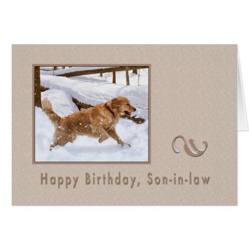 Cumpleaños, yerno, perro del golden retriever en n tarjetas