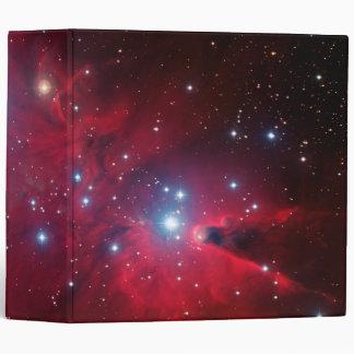 Cúmulo de estrellas del árbol de navidad