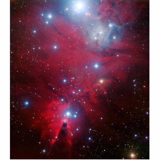 Cúmulo de estrellas del árbol de navidad escultura fotografica