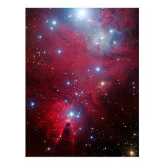 Cúmulo de estrellas del árbol de navidad postales