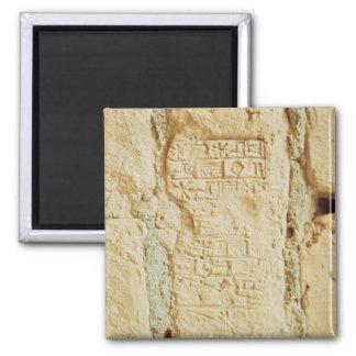 Cuneiform script on a palace wall magnet
