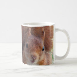 Cup ÉCUREUIL Cup SUIRREL cup of SQUIRRELS