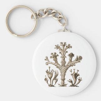 Cup Lichen Basic Round Button Keychain