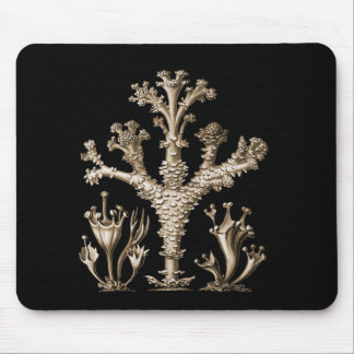 Cup Lichen Mouse Pad