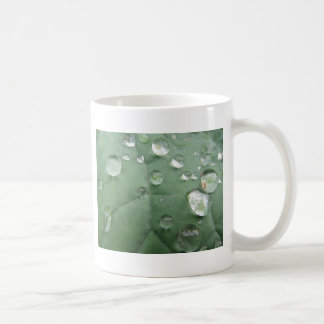 Cup many water drops on green-grey sheet