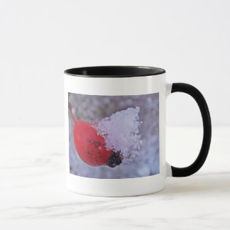 Cup of rosehips with snow small piles